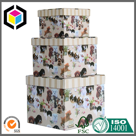 Colorful Print Rigid Cardboard Paper Gift Boxes Set